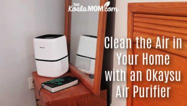 Clean the Air in Your Home with an Okaysu Air Purifier