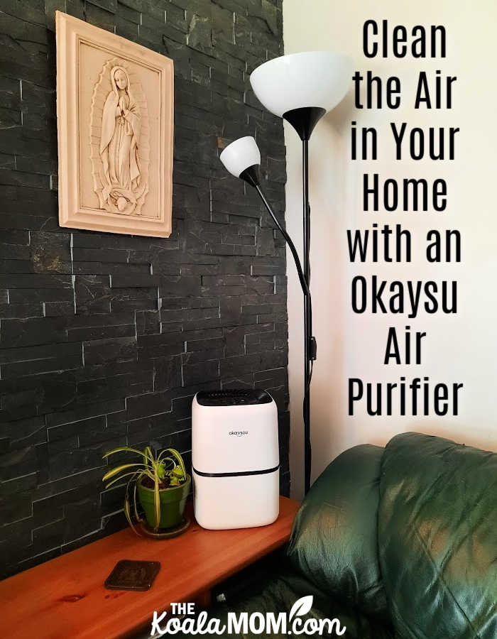 Clean the Air in Your Home with an Okaysou Air Purifier