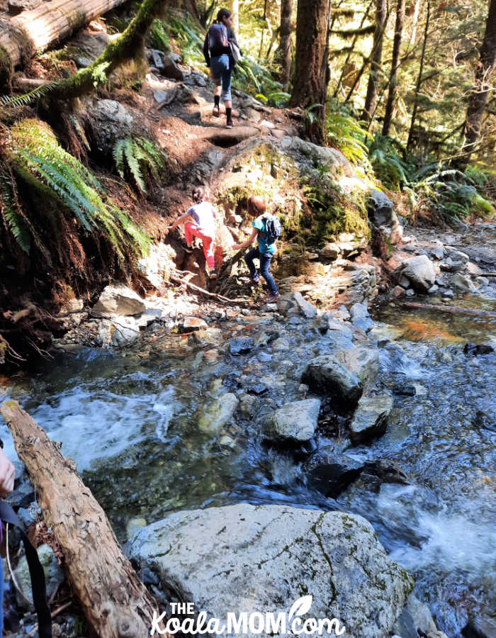Kids crossing a stream on the Viewpoint Trail.