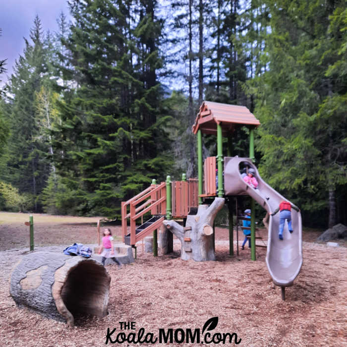 Adventure Playground in the Paleface Campground.
