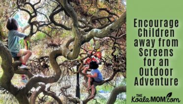 Encourage Children away from Screens for an Outdoor Adventure