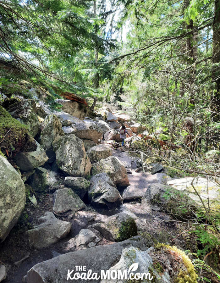 5-year-old hiking a rocky trail.