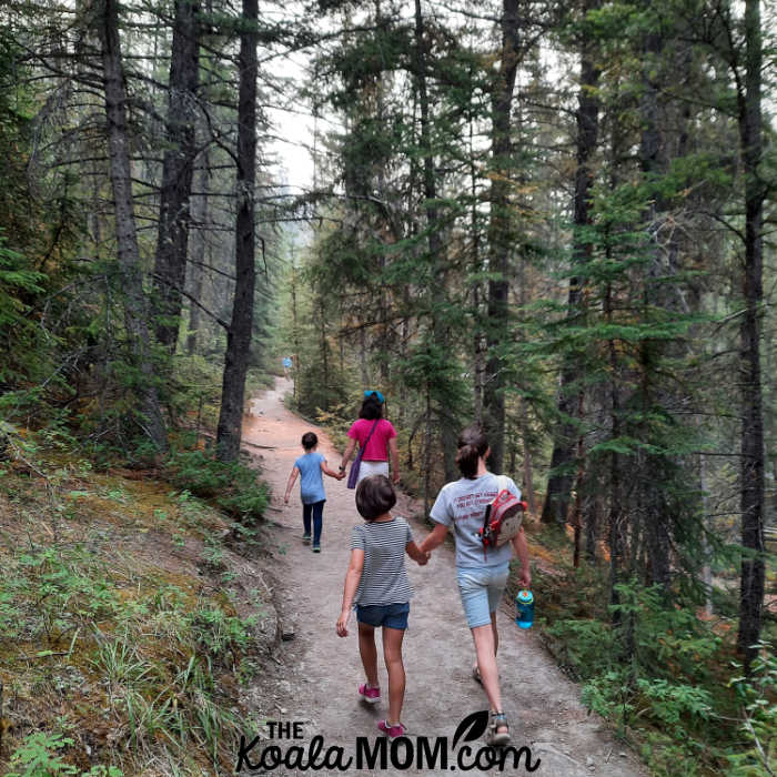 Four sisters hiking a trail in Jasper National Park.
