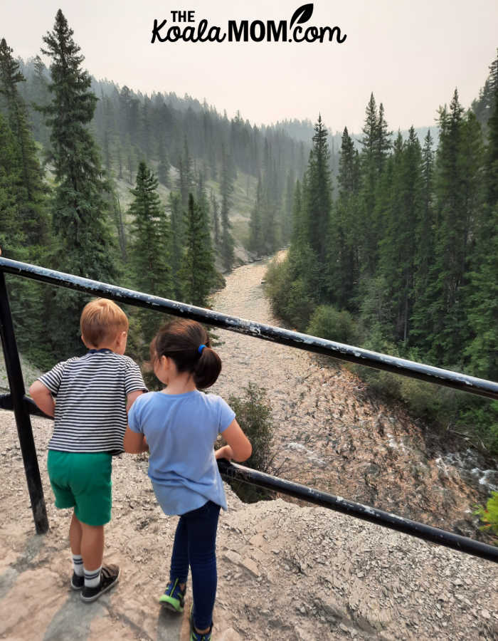 A 5-year-old and 3-year-old admire the view of a river in Jasper National Park.