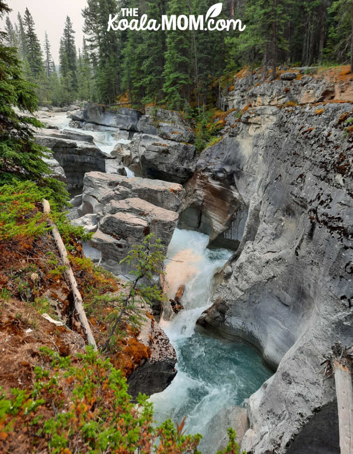 The canyon carved by the Maligne River.