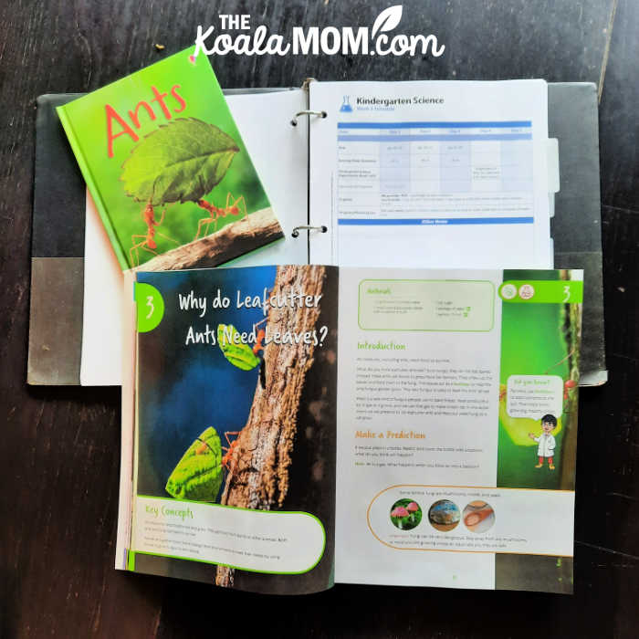 Ant unit study: suggested schedule, experiment and book to read in the BookShark homeschool science kit.