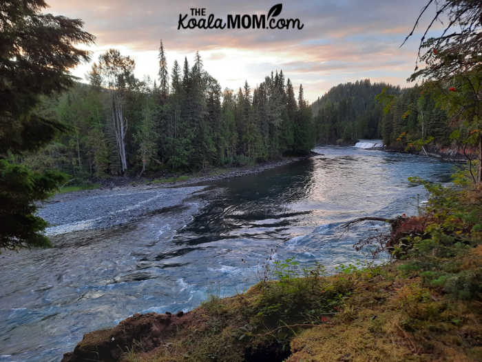 Osprey Falls on the Clearwater River at sunset.