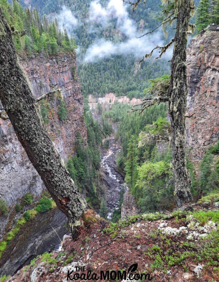 Spahats Falls Canyon, with views of the Clearwater River far below.