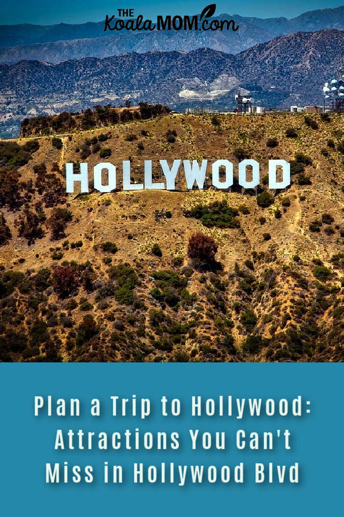 Plan a Full Day Trip to Hollywood: Attractions You Can't Miss in Hollywood Blvd